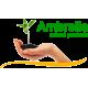 Компания «Ambrella»