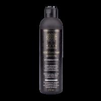 Безсульфатный шампунь для жирных волос Nano Organic, 270 мл.